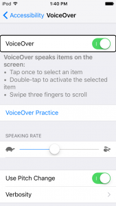 iOS VoiceOver settings